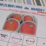 ビンゴdeマンゴー