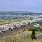 柴田町 一目千本桜