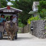 西表石垣国立公園 竹富島