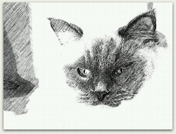 SketchGuru_20130129194921